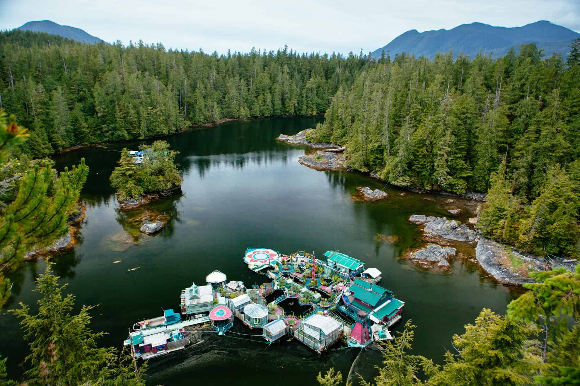 Freedom Cove | The Official Tourism Tofino