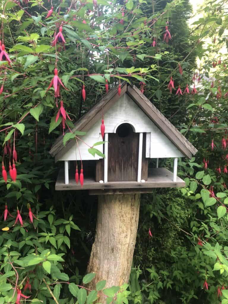 Tofino Heron Cottage