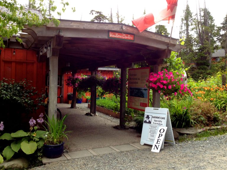Darwin's Cafe at Tofino Botanical Gardens