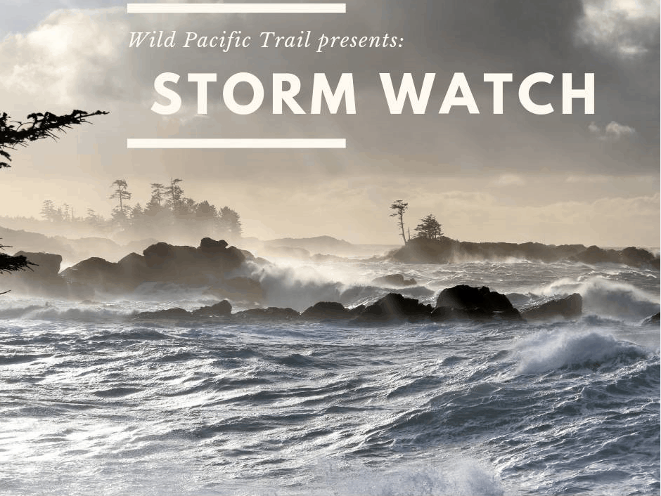 Poster for Storm Watch Wild Pacific Trail Interpretive Walk