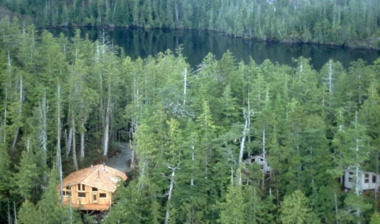 Cougar Annie's Garden: Boat Basin